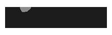 DizzyData logo grayscale